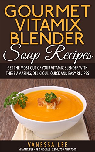 Gourmet Vitamix Blender Soup R...