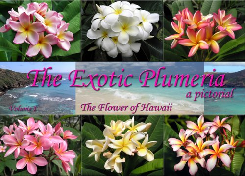 The Exotic Plumeria: A Pictorial: The Flower of Hawaii