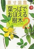 原寸図鑑 葉っぱでおぼえる樹木〈2〉