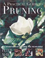 A Practical Guide to Pruning