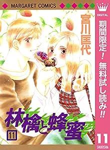 林檎と蜂蜜【期間限定無料】 11 (マーガレットコミックスDIGITAL)