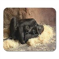 ファッションが流行するマウスパッドアフリカ黒絶滅危Western種ニシローランドゴリラブラウン種動物用ファッションが流行するマウスパッドノートブック、デスクトップコンピューターマットオフィス用品