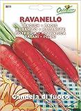 野菜の種 ラディッシュ・キャンドル赤