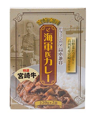 宮崎高岡 海軍医カレー 220g×2パック