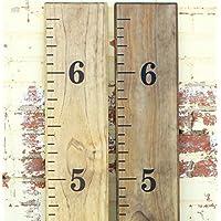 Little Acorns DIY Vinyl Growth Chart Ruler Decal Kit [並行輸入品]