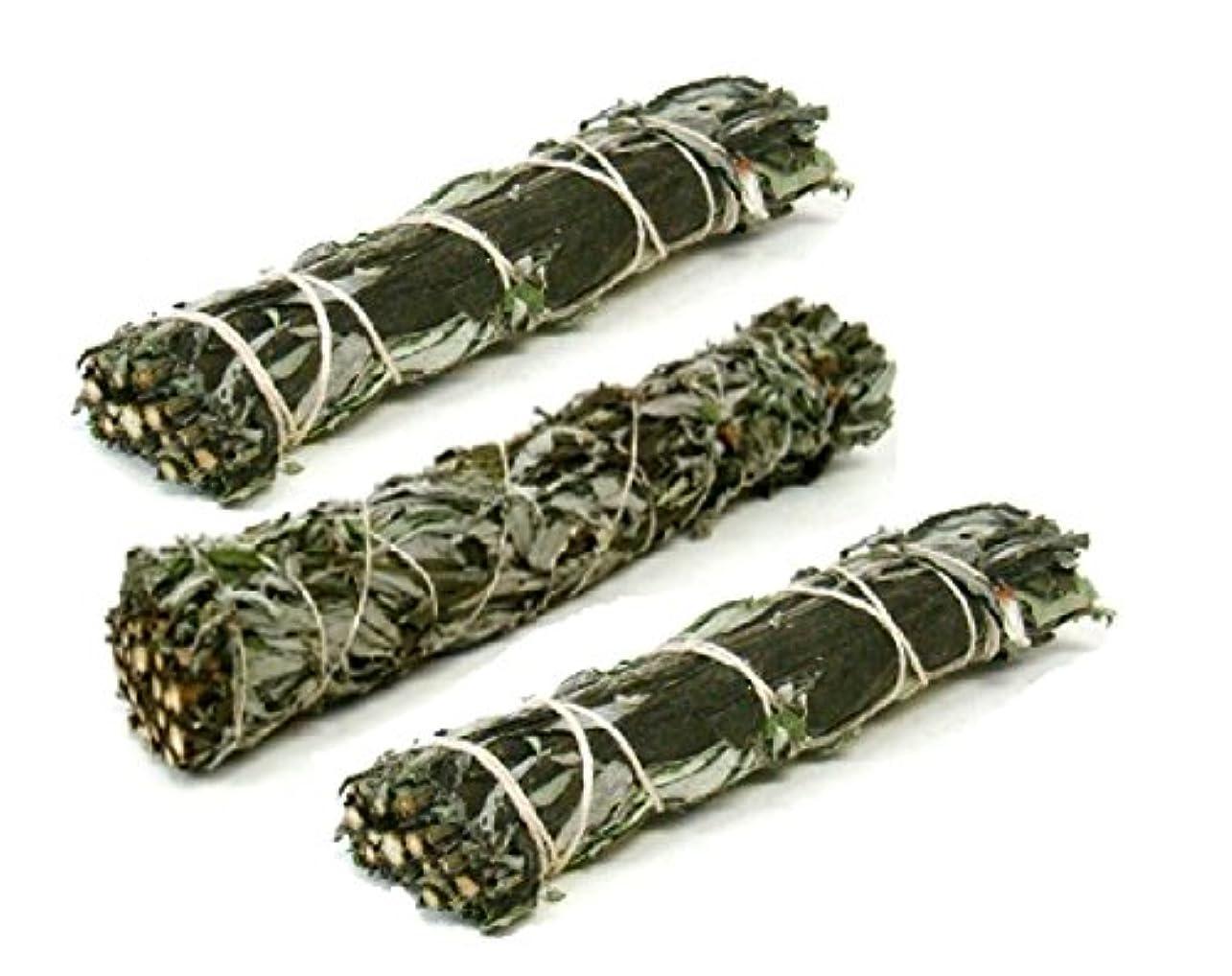 クリスチャン不適切な表面Set of 3 Mugwort (ブラックセージ) Smudge Sticks