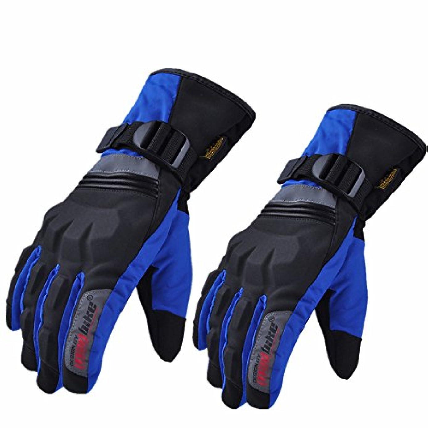 法王話パスポート快適 冬のオートバイの手袋 拡張する 厚い 防水 暖かく保つ 手袋 に適用する 乗る レーシング ハイキング 釣り (色 : 青, サイズ : L)