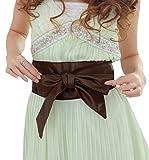 (R-Dream) レザー サッシュベルト つやつや カラバリ豊富 (ブラウン) スカート リボン ドレス 結婚式 パーティー 細ベルト リング タイ 制服 ファッション 大きいサイズ おおきい (茶色)