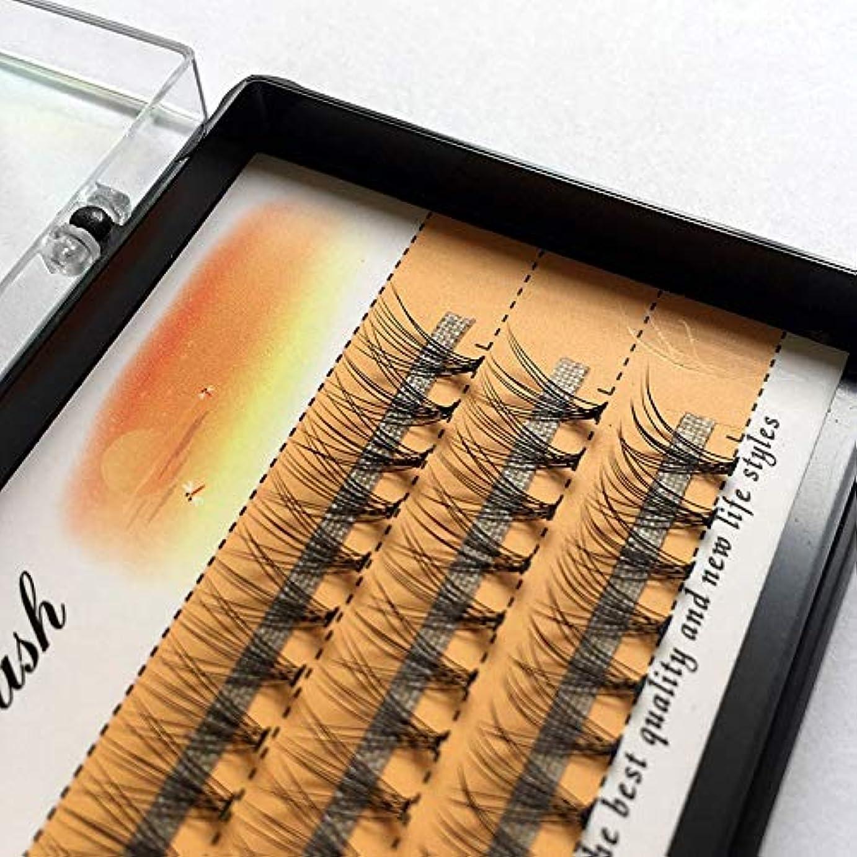 アルコール頭蓋骨脆い美容アクセサリー 3ボックスナチュラルロング個々フレアまつげクラスタつけまつげ60バンドル/ボックス(10mm) 写真美容アクセサリー (色 : 10mm)