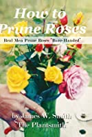 "How To Prune Roses ""Real Men Prune Roses Bare Handed"""