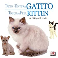 Toca Y Aprende Gatito / Touch and Feel Kitten (Touch & Feel)