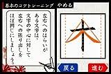 DS美文字トレーニング 画像