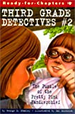 Puzzle of the Pretty Pink Envelope (Third Grade Detectives)
