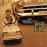 BIG,BIGGER,BIGGEST! The Best Of MR.BIG 画像