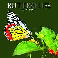 2020 壁掛けカレンダー バタフライカレンダー 12 x 12インチ 月間表示 16ヶ月 昆虫テーマ 180リマインダーステッカー付き