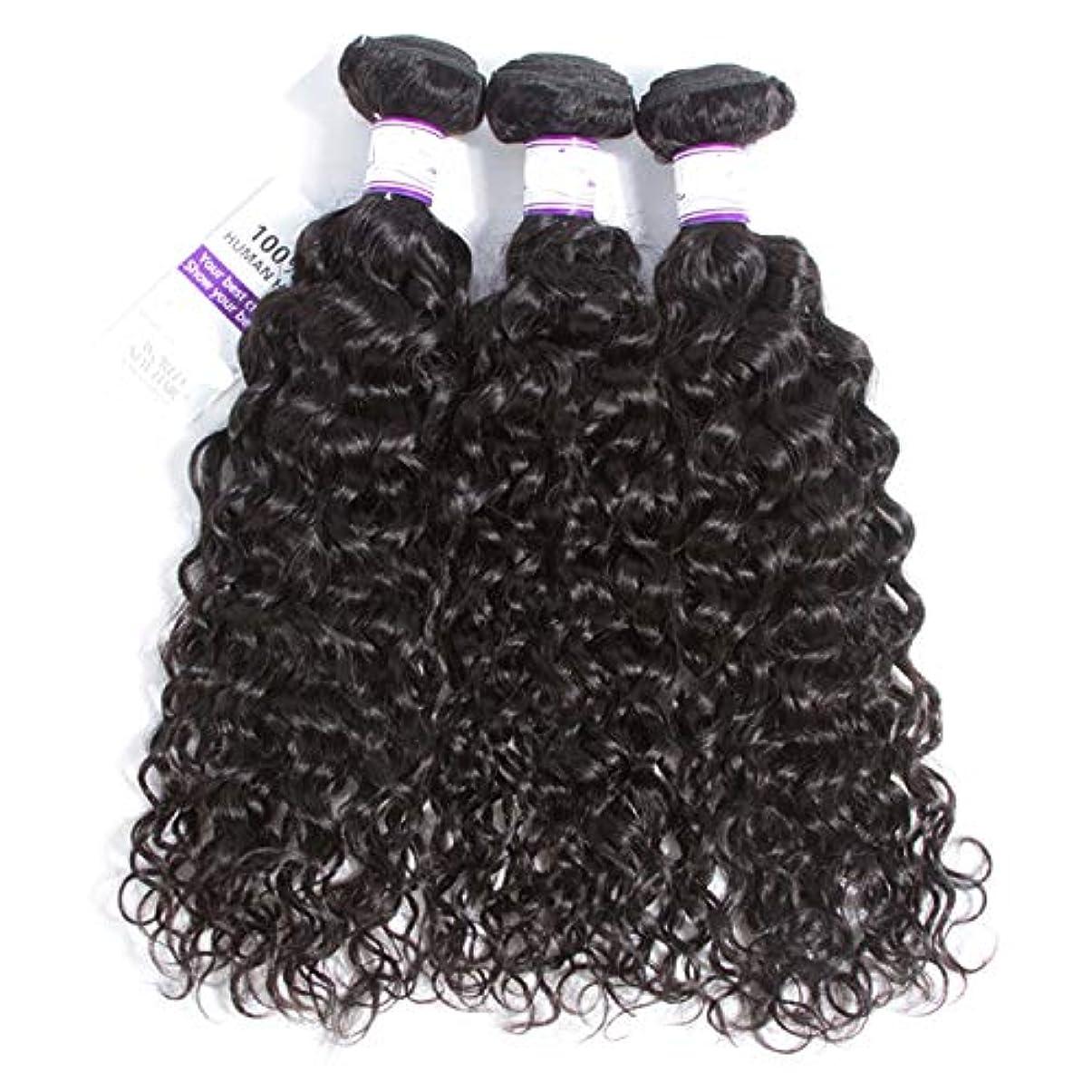 遅滞豊富ループかつら マレーシアの水の波の髪3個ナチュラルブラック人間の髪の毛の束非レミーの毛延長8-28インチ (Length : 12 14 14)