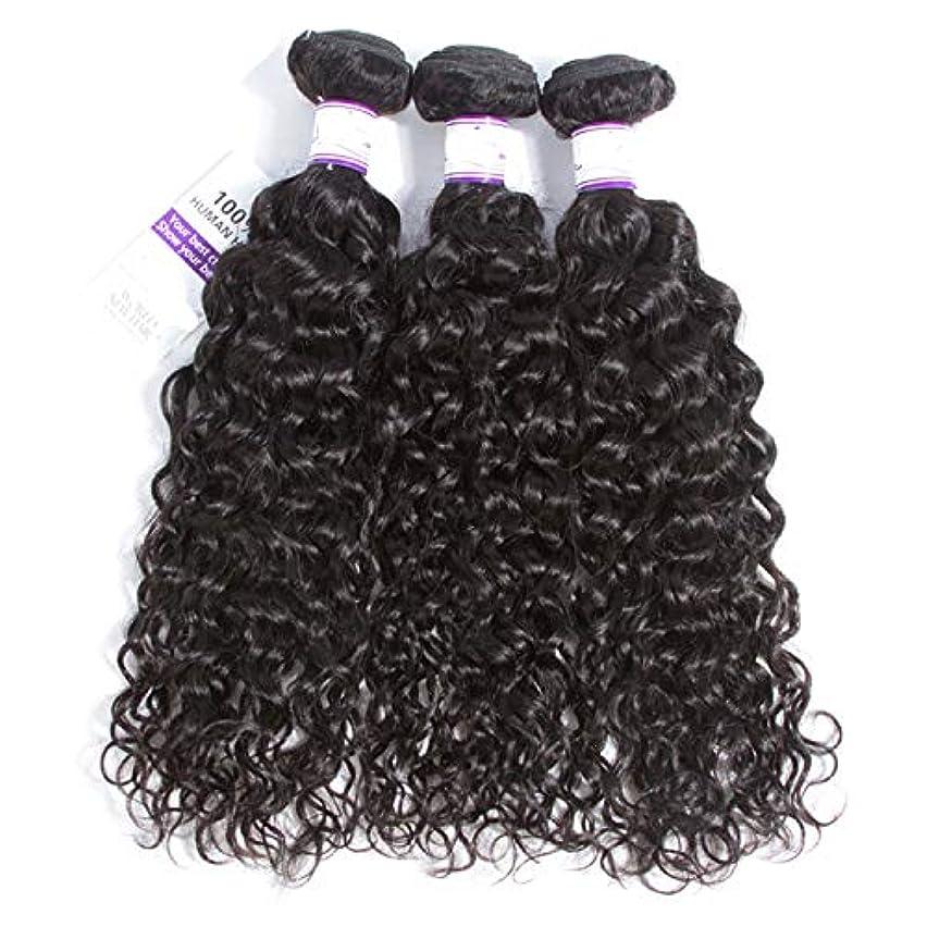 はしごタヒチ亡命かつら マレーシアの水の波の髪3個ナチュラルブラック人間の髪の毛の束非レミーの毛延長8-28インチ (Length : 12 14 14)