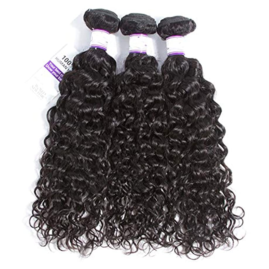 ピーク手綱尊敬するマレーシアの水の波の髪3個ナチュラルブラック人間の髪の毛の束非レミーの毛延長8-28インチ (Length : 16 18 20)