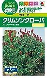 【緑肥】 タキイ種苗 クリムソン クローバー
