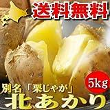 北海道ふらの産 甘いジャガイモ 北あかり 5kg