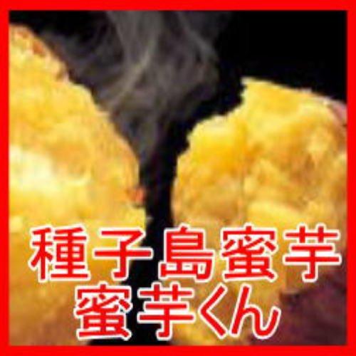 種子島蜜芋 蜜芋くん  訳あり 5kg 【種子島産 安納芋】