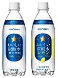 サッポロ おいしい炭酸水(プレーン.レモン)各24本 合計48本セット