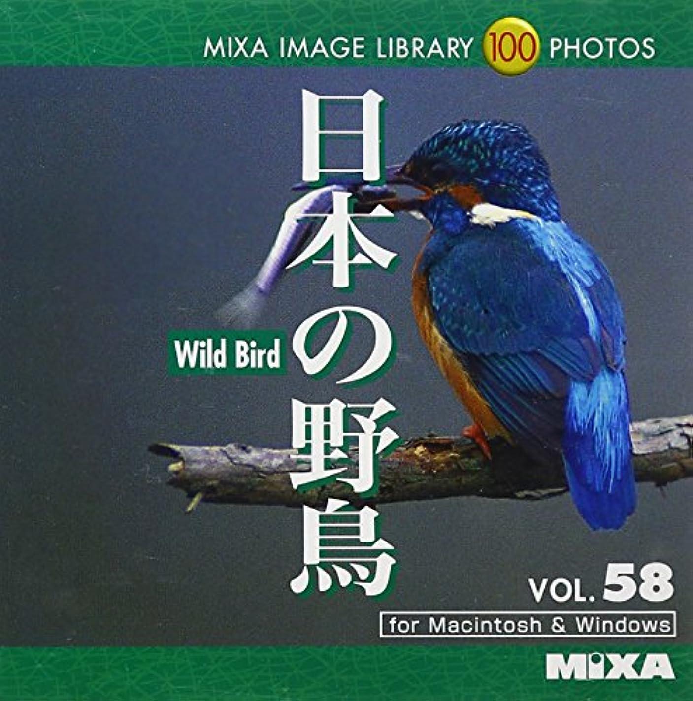 起こりやすい効率フィクションMIXA IMAGE LIBRARY Vol.58 日本の野鳥