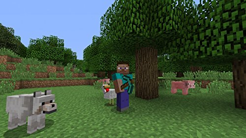 MojangAB『Minecraft:PlayStation4Edition』