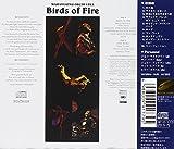 火の鳥 画像