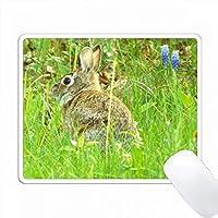 草の根のウサギ PC Mouse Pad パソコン マウスパッド