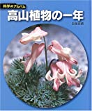 高山植物の一年 (科学のアルバム)