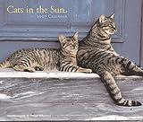 Cats in the Sun 2007 Calendar