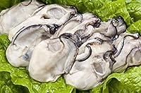 【おさかな問屋 魚奏】 広島産 カキ 大粒むき牡蠣 (加熱用) 特大2Lサイズ 3kg 100粒前後