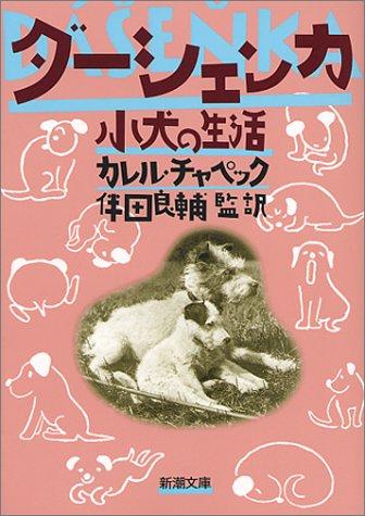 ダーシェンカ―小犬の生活の詳細を見る
