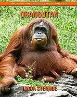 Orangutan: Amazing Pictures and Facts About Orangutan