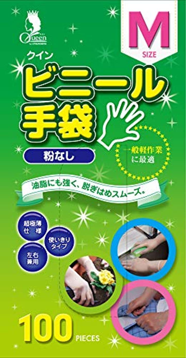 実質的に穴リングレット宇都宮製作 クイン ビニール手袋 半透明 M 使い捨て手袋 粉なし PVC0502PF-TB 100枚入