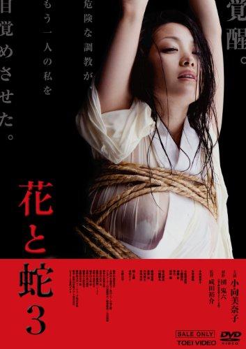 花と蛇3【DVD】