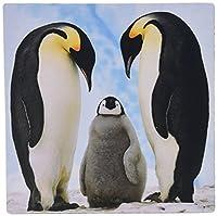3Dローズ 鳥 - 皇帝ペンギン家族 - マウス パッド - マウスパッド - mp_4180_1 (並行輸入)