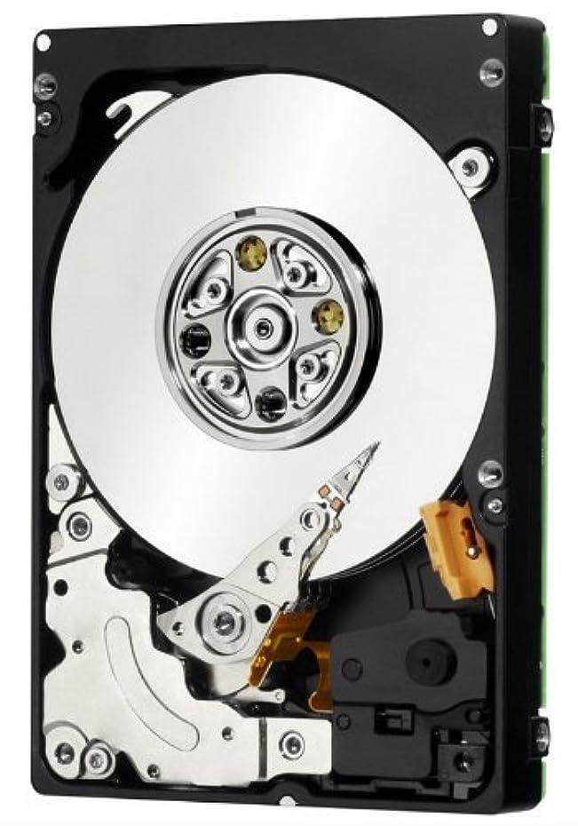 行商続ける理解IBM 00Y2431 900GB 10K 6GBPS SAS 2.5 HDD新バルク - 00Y5708, 00Y2505