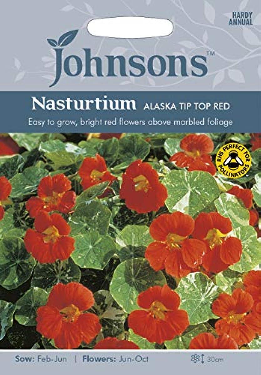 作成者星コンベンション種子パッケージ:3:ジョンソンSeedsAlaskaチップトップレッドシード - Y!