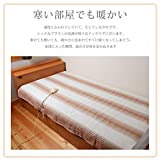 LIFEJOY 洗える 電気毛布 敷きタイプ 130cm×80cm ブラウン BS402