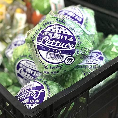 国産・無農薬で、「書ける」レタス。食べられません。