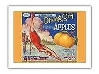 カリフォルニアのリンゴ - ニュータウンPippins - ダイビングガールズブランド - ビンテージなフルーツの木箱のラベル c.1920s - プレミアム290gsmジークレーアートプリント - 30.5cm x 41cm