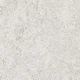 サンゲツ フロアタイル (フロアータイル) 床用塩ビタイル 〈土足OK・店舗向け 床材 〉 ストーン(石目) スパニッシュライム (IS-710) (旧 IS-312)【サンプル】