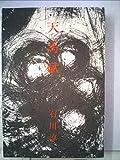 天馬賦 (1969年)