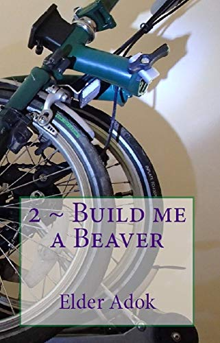 2 ~ Build me a BEAVER (Buffalo...