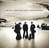 ALL THAT YOU CAN'T LEA [12 inch Analog]/