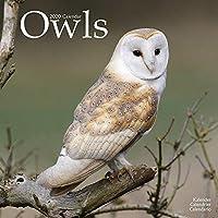 Owls Calendar 2020