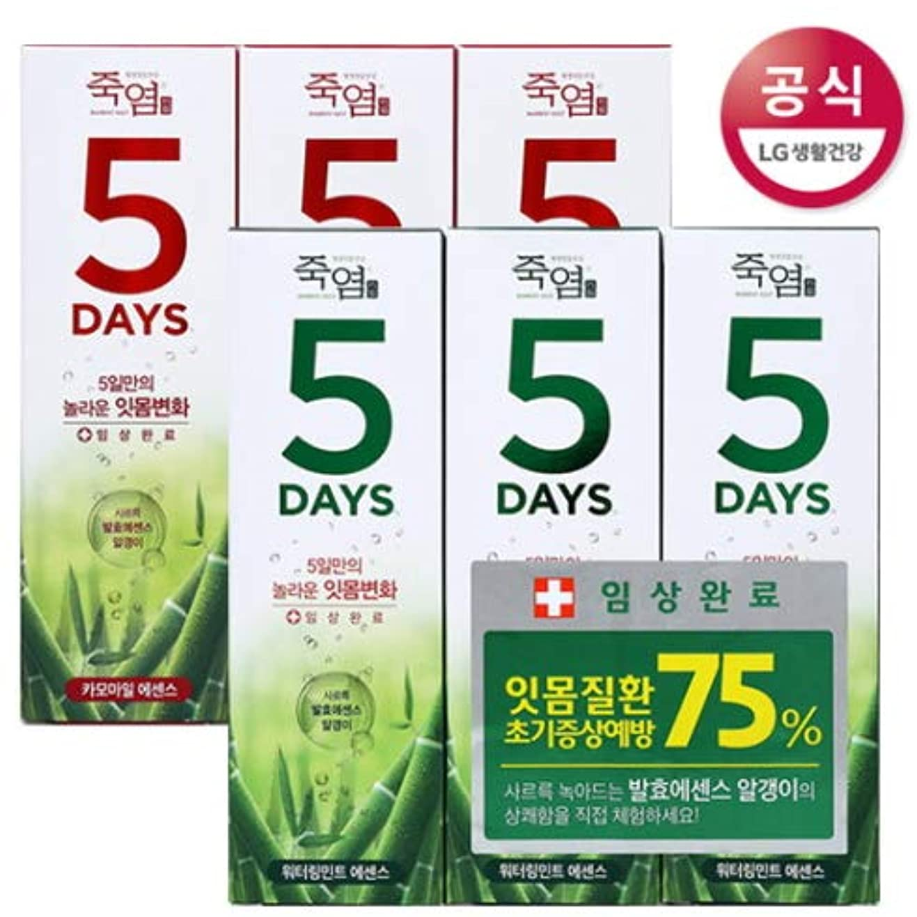 周波数中に空[LG HnB] Bamboo Salt 5days Toothpaste /竹塩5days歯磨き粉 100gx6個(海外直送品)