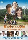 棘の中にある奇跡 笠間の栗の木下家[DVD]